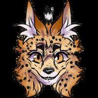 Social Serval